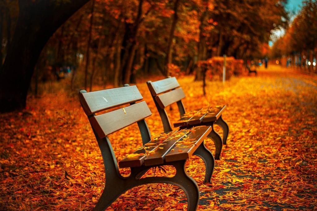 Fall feeling